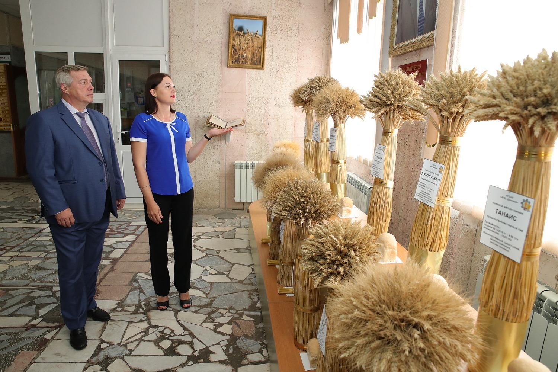 Василий Голубев: «На Дону собрано уже более 8 млн тонн зерна нового урожая»