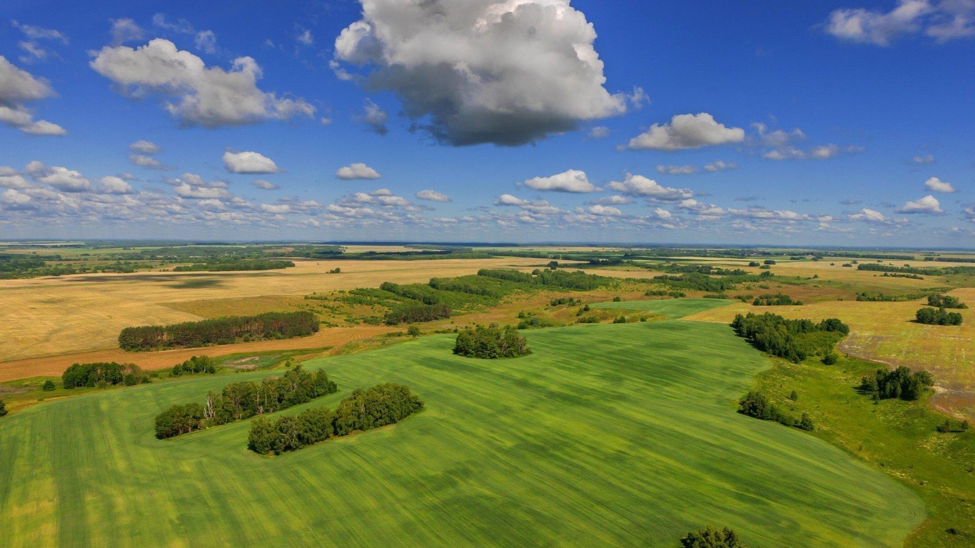 Новый подход к земледелию разрабатывают в Ростовской области.