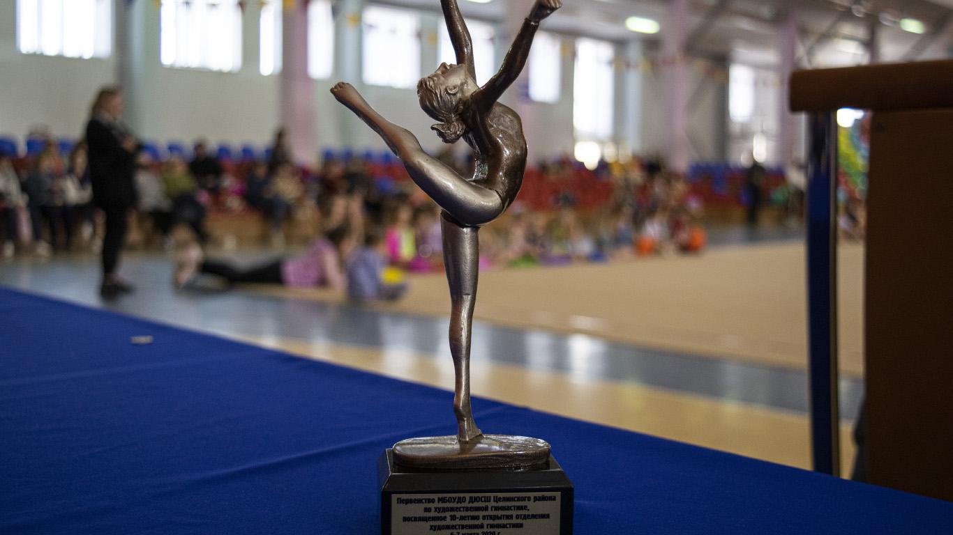 Юбилейное Первенство по художественной гимнастике