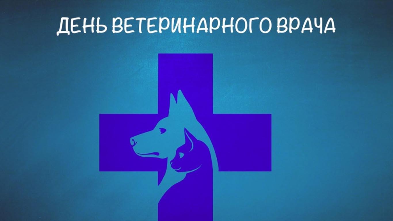 Ветеринар – это не только специальность, а призвание