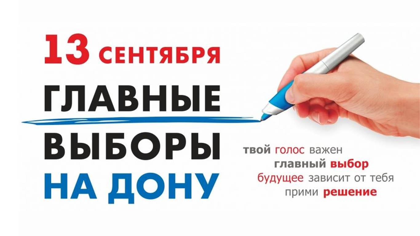 Более 2,5 тысяч общественных наблюдателей обеспечат прозрачность голосования