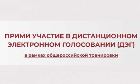 Жители донского региона смогут принять участие в дистанционном голосовании