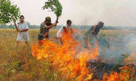 В Целинском районе объявлен особый противопожарный режим