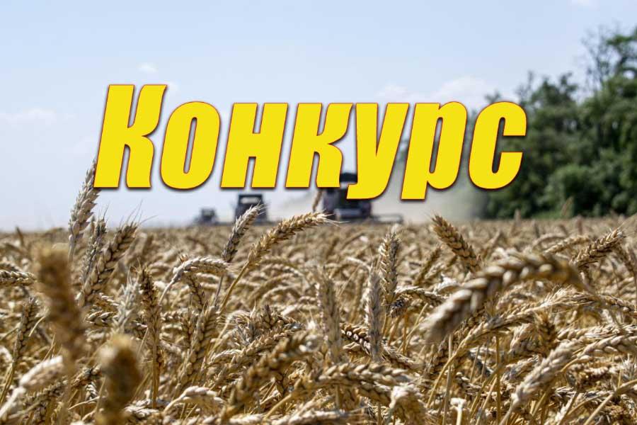 Ко Дню работников сельского хозяйства — конкурс
