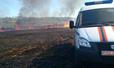 Спасатели Ростовской областной поисково-спасательной службы ежемесячно выезжают для ликвидации ландшафтных пожаров